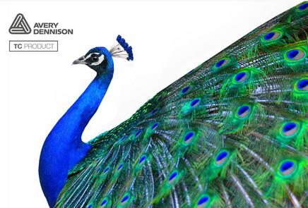 艾利丹尼森全新TC150高速印刷涂层方案助印刷商提高生产效率