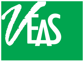 Minh Vi Exhibition & Advertisement Services Co., Ltd (VEAS CO., LTD) logo