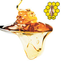 Feria gubernamental de apicultura 2020